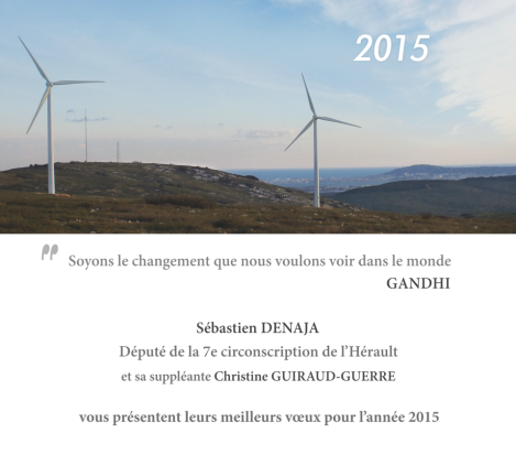 Carte-voeux-S.Denaja-2015 (2)